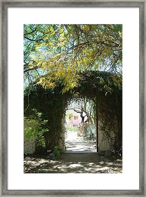 At Tohono Chul Framed Print
