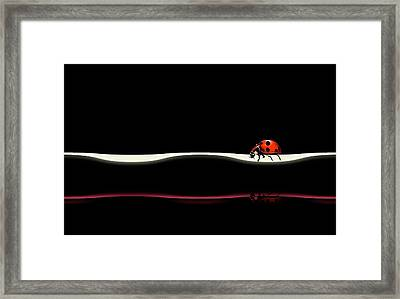 At Your Pace Framed Print