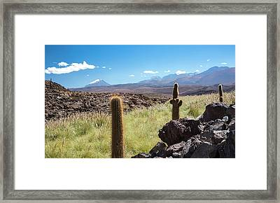 Atacama Landscape With Cactus Framed Print by Peter J. Raymond