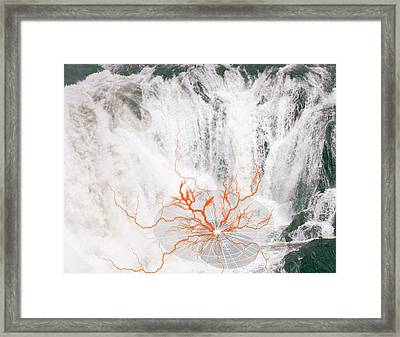 Ater Framed Print by Valerie Wolf