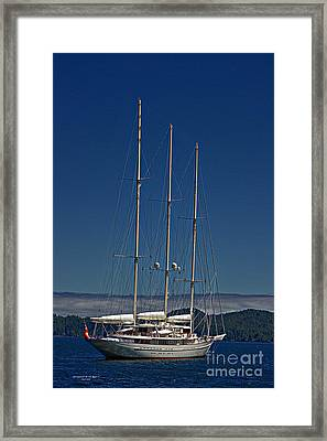 Athena Framed Print by Gail Bridger