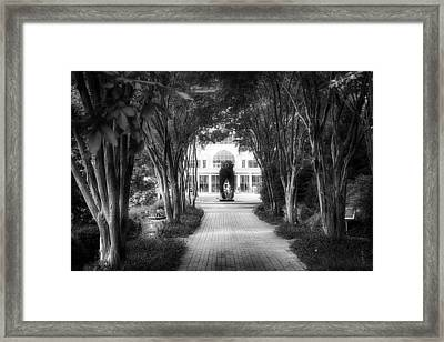 Atlanta Botanical Garden-black And White Framed Print