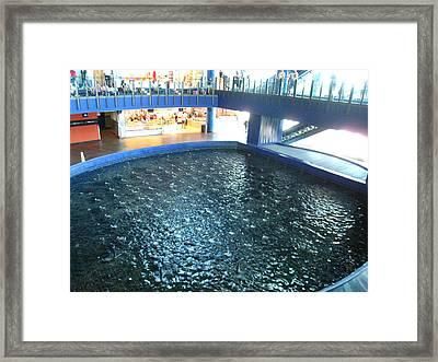 Atlantic City - 01134 Framed Print by DC Photographer