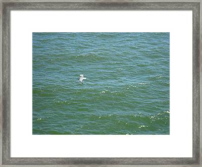 Atlantic City - 12129 Framed Print by DC Photographer