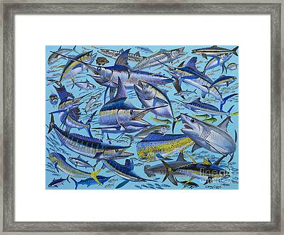 Atlantic Gamefish Off008 Framed Print by Carey Chen