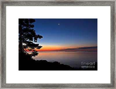 Atlantic Ocean Framed Print by Donald Gargano