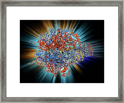 Atpase Molecule Framed Print by Laguna Design