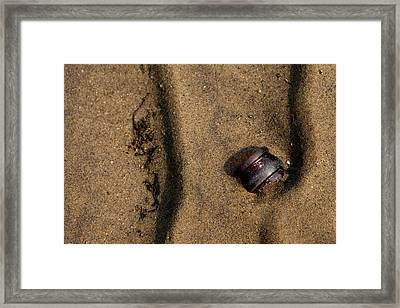 Atres 4 Framed Print by Karol Livote