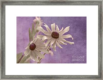 Attachement - S09at01b2 Framed Print