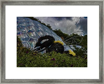 Attack Of The Giant Wasp Framed Print by Martin Newman