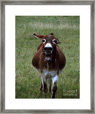 Attack Framed Print by Peter Piatt