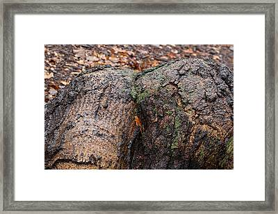 Attention Drawing Framed Print by Juergen Roth