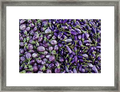 Aubergines Framed Print by Tim Gainey