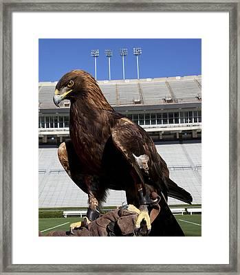 Auburn War Eagle Framed Print