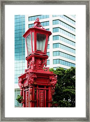 Auckland Close Up Red Lamp Framed Print by Linda Phelps