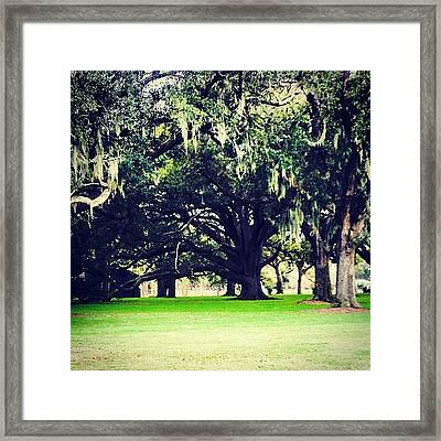 Audubon Golf Course What A Beautiful Framed Print