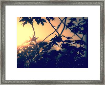 August Memories Framed Print