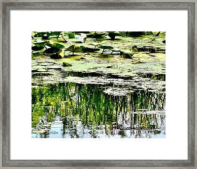 August Framed Print