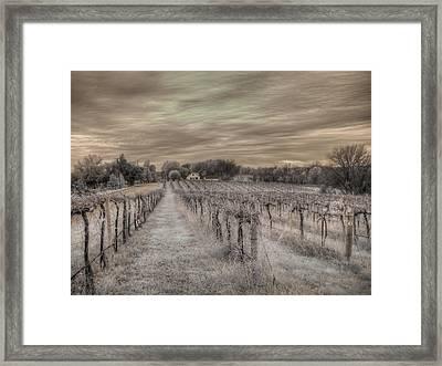 Augusta Missouri Winery Framed Print by Jane Linders
