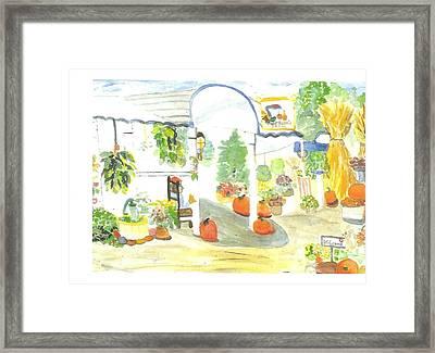 Aunt Helen's Farm Framed Print by Thelma Harcum