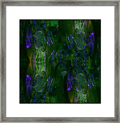 Framed Print featuring the photograph Aura by Robert Kernodle