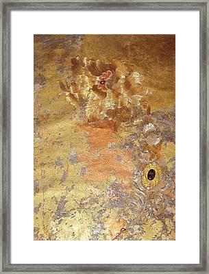 Auribindo Day Framed Print by Dan A  Barker