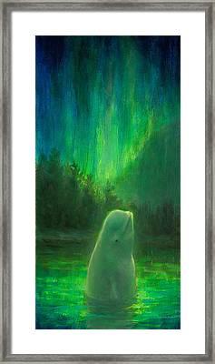 Aurora Beluga Framed Print by Karen Whitworth
