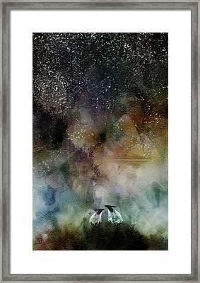 Aurora Borealis Sheep Framed Print