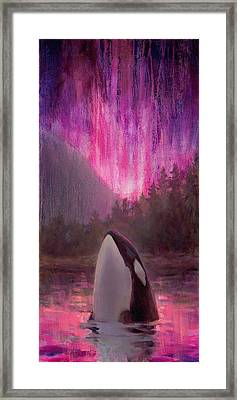 Orca Whale And Aurora Borealis - Killer Whale - Northern Lights - Seascape - Coastal Art Framed Print