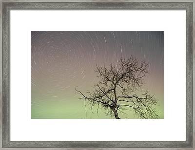 Auroras And Polaris Framed Print by Tim Grams