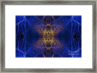 Aurvandil Framed Print by Tim Gainey