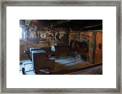 Auschwitz - 108 Framed Print