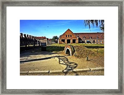 Auschwitz-5 Framed Print