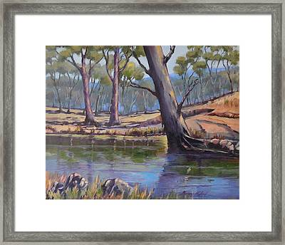 Aussie Billabong Framed Print