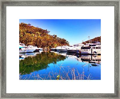 Aussie Blues Framed Print