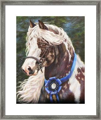 Austin Gypsy Stallion Framed Print