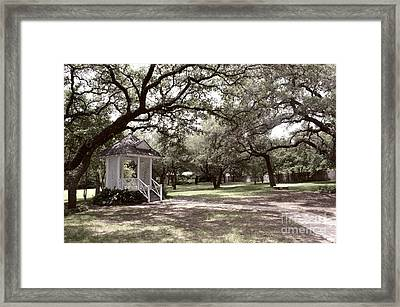 Austin Texas Southern Garden - Luther Fine Art Framed Print by Luther Fine Art