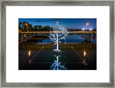 Austin Thirst Tree Framed Print by Tod and Cynthia Grubbs