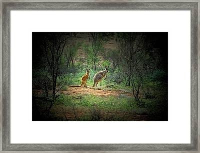 Australia, New South Wales, Broken Framed Print by Rona Schwarz