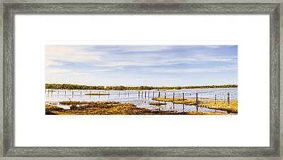 Australian Mangrove Landscape Panorama Framed Print by Jorgo Photography - Wall Art Gallery