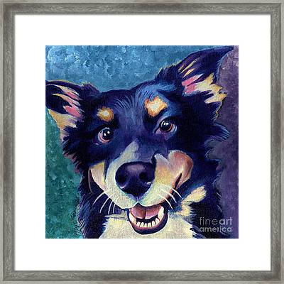 Australian Shepard Dog Portrait Framed Print by Robyn Saunders