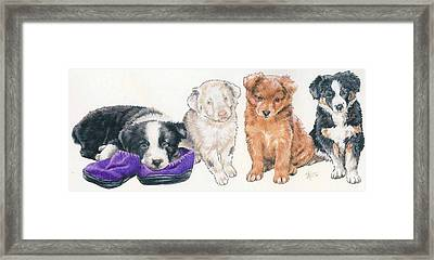 Australian Shepherd Puppies Framed Print by Barbara Keith