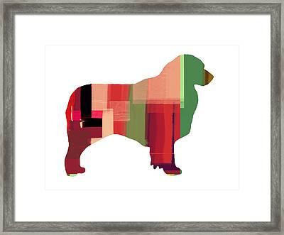 Australian Sheppard Framed Print by Naxart Studio
