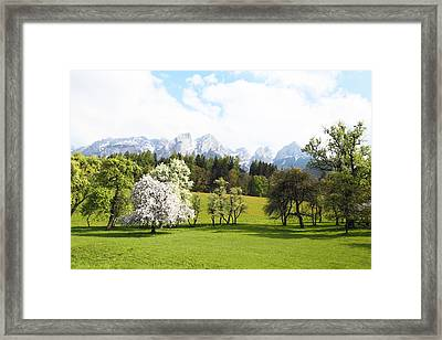Austrian Landscape In Spring Framed Print by Brooke T Ryan