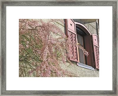 Austrian Spring Framed Print by Ann Horn