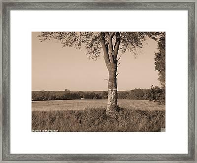 Auto Grave Framed Print