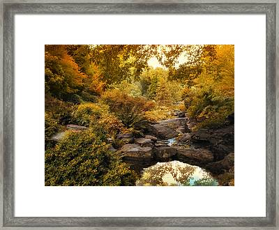 Russet Rock Garden Framed Print by Jessica Jenney