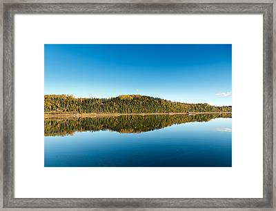 Autum Forest Reflection In The Ocean  Framed Print