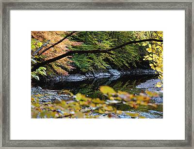 Framed Print featuring the photograph Autum In Philadelphia by Dorin Adrian Berbier