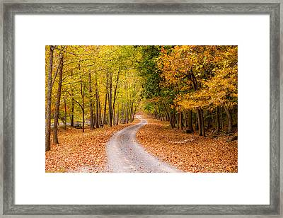 Autum Path Framed Print by Melinda Ledsome